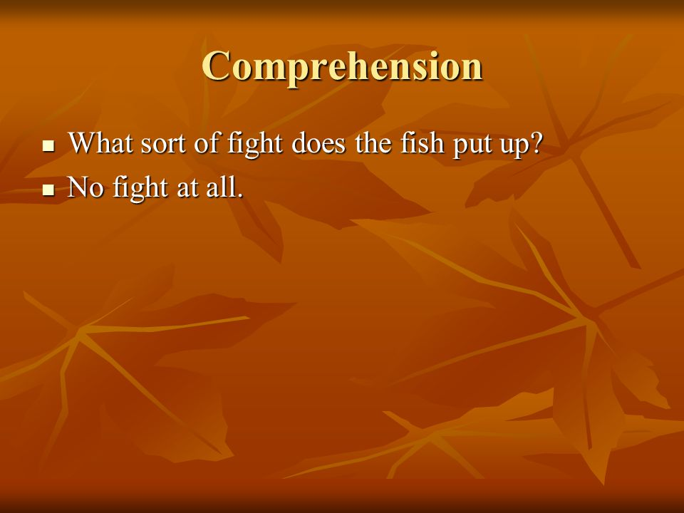 Comprehension What sort of fight does the fish put up? What sort of fight does the fish put up? No fight at all. No fight at all.
