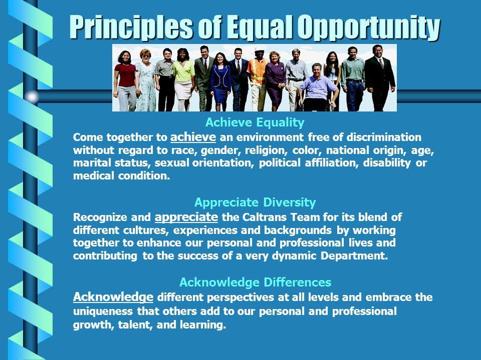 Headquarters Equal Opportunity Program Organizational Chart