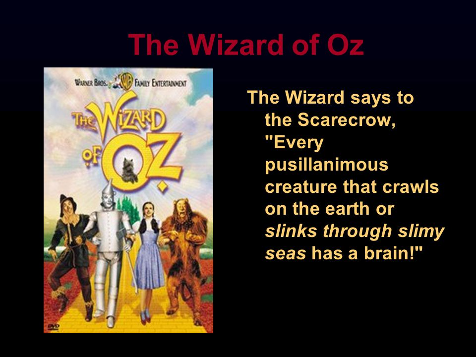 The Wizard of Oz The Wizard says to the Scarecrow, Every pusillanimous creature that crawls on the earth or slinks through slimy seas has a brain!