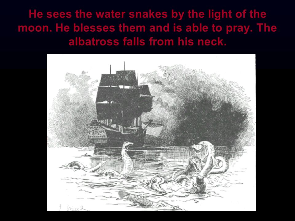 He sees the water snakes by the light of the moon. He blesses them and is able to pray. The albatross falls from his neck.