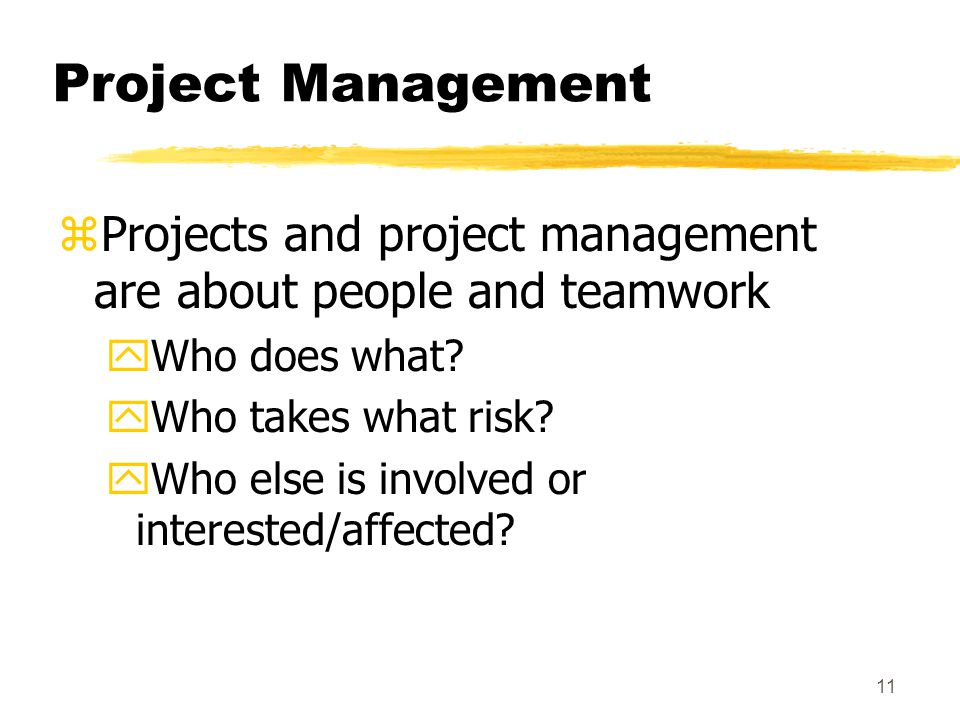 10 What is Project Management.