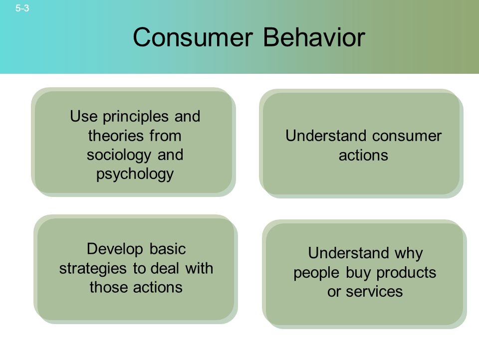 5-3 © 2007 McGraw-Hill Companies, Inc., McGraw-Hill/Irwin Consumer Behavior Use principles and theories from sociology and psychology Understand consumer actions Develop basic strategies to deal with those actions Understand why people buy products or services