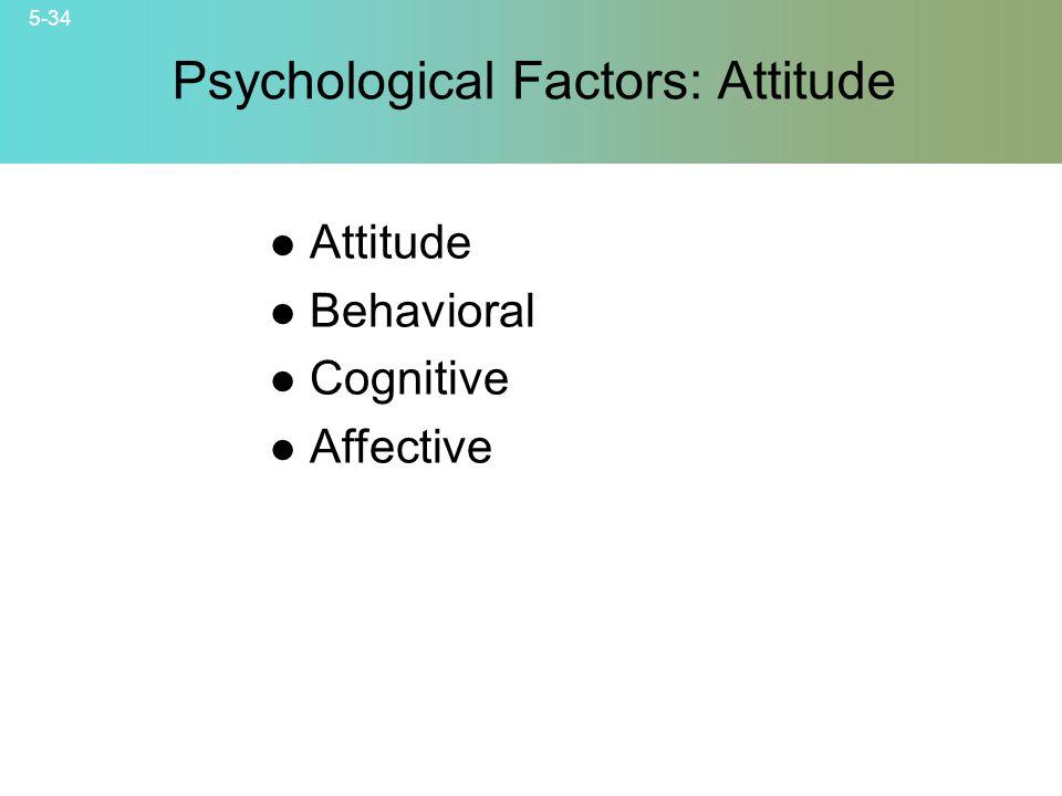 5-34 © 2007 McGraw-Hill Companies, Inc., McGraw-Hill/Irwin Psychological Factors: Attitude Attitude Behavioral Cognitive Affective