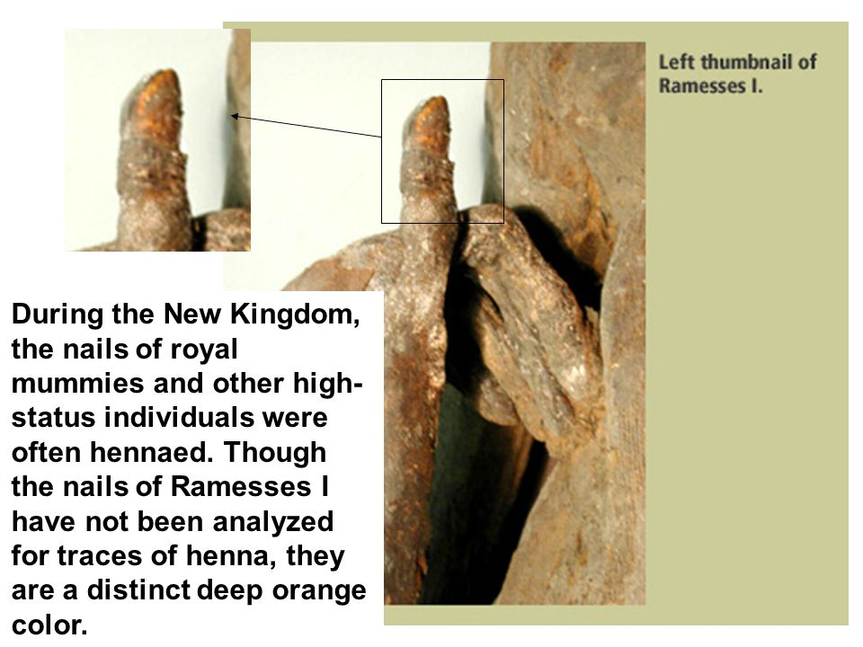 During the New Kingdom, the nails of royal mummies and other high- status individuals were often hennaed.