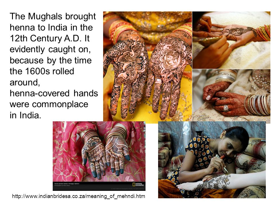 The Mughals brought henna to India in the 12th Century A.D.