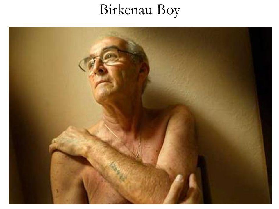 Birkenau Boy