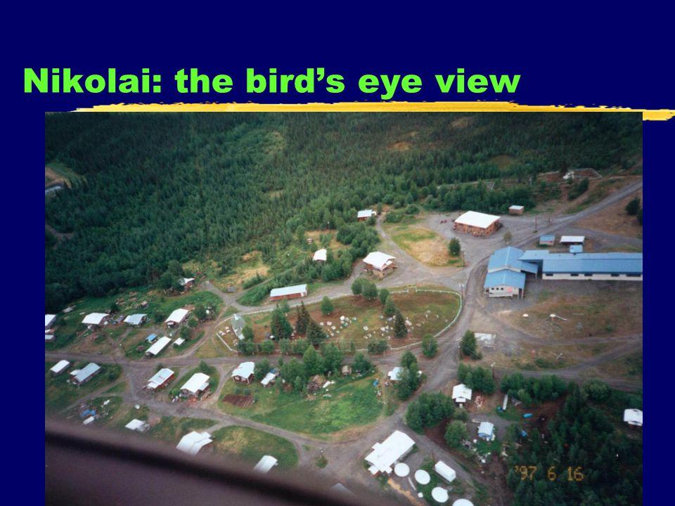 5 Nikolai: the birds eye view