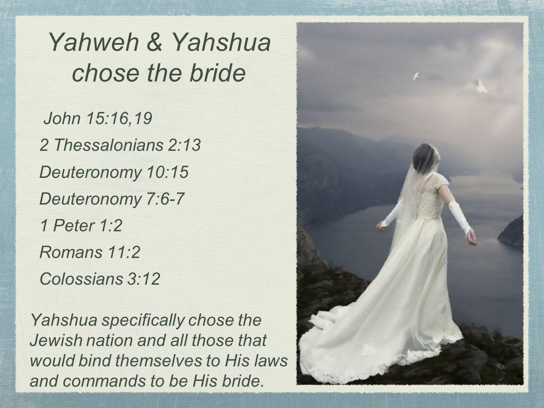 Yahweh & Yahshua chose the bride John 15:16,19 2 Thessalonians 2:13 Deuteronomy 10:15 Deuteronomy 7:6-7 1 Peter 1:2 Romans 11:2 Colossians 3:12 Yahshu
