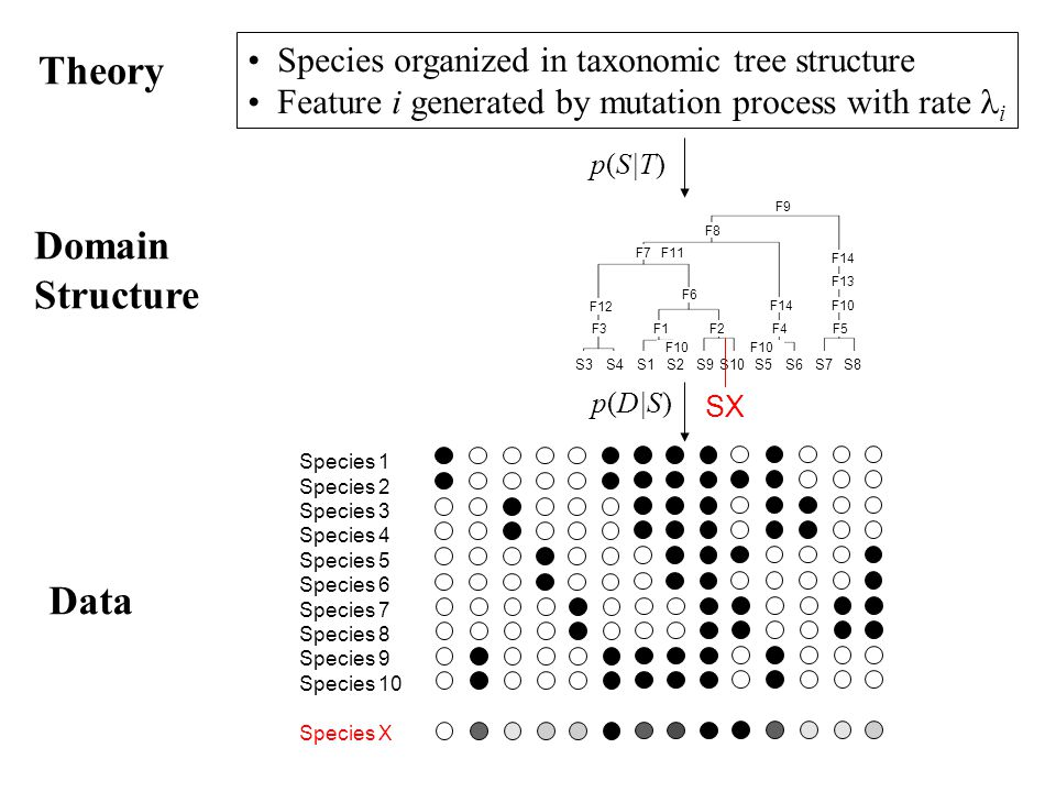Theory Species organized in taxonomic tree structure Feature i generated by mutation process with rate i Species 1 Species 2 Species 3 Species 4 Speci