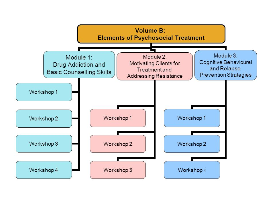 Volume B: Elements of Psychosocial Treatment Module 1: Drug Addiction and Basic Counselling Skills Workshop 1 Workshop 2 Workshop 3 Workshop 4 Module