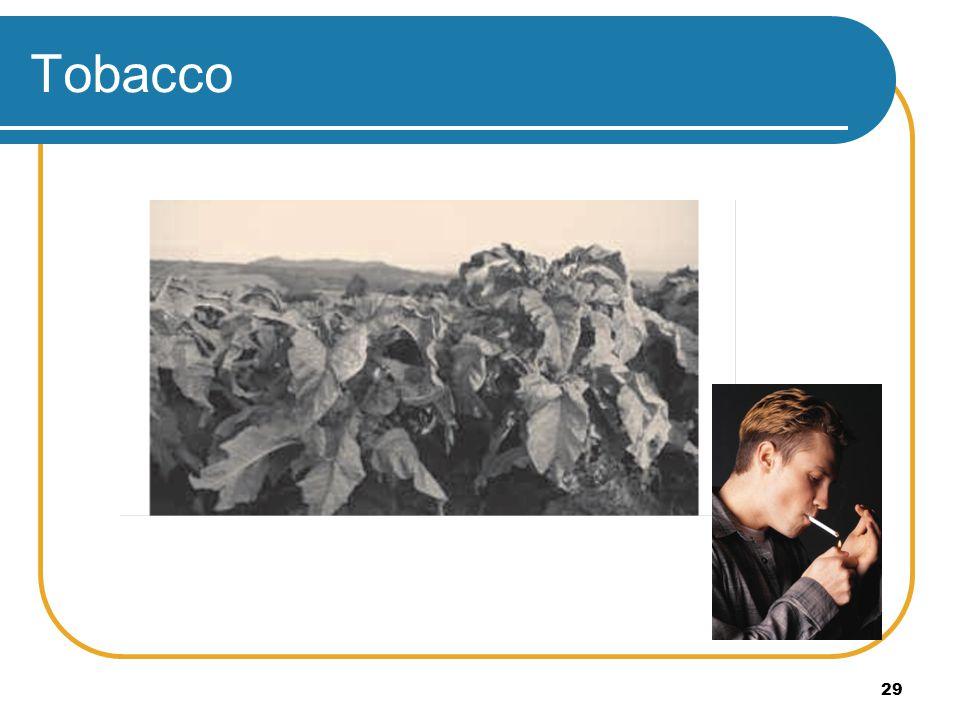 29 Tobacco