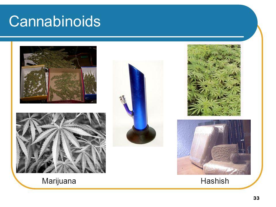 33 Cannabinoids HashishMarijuana