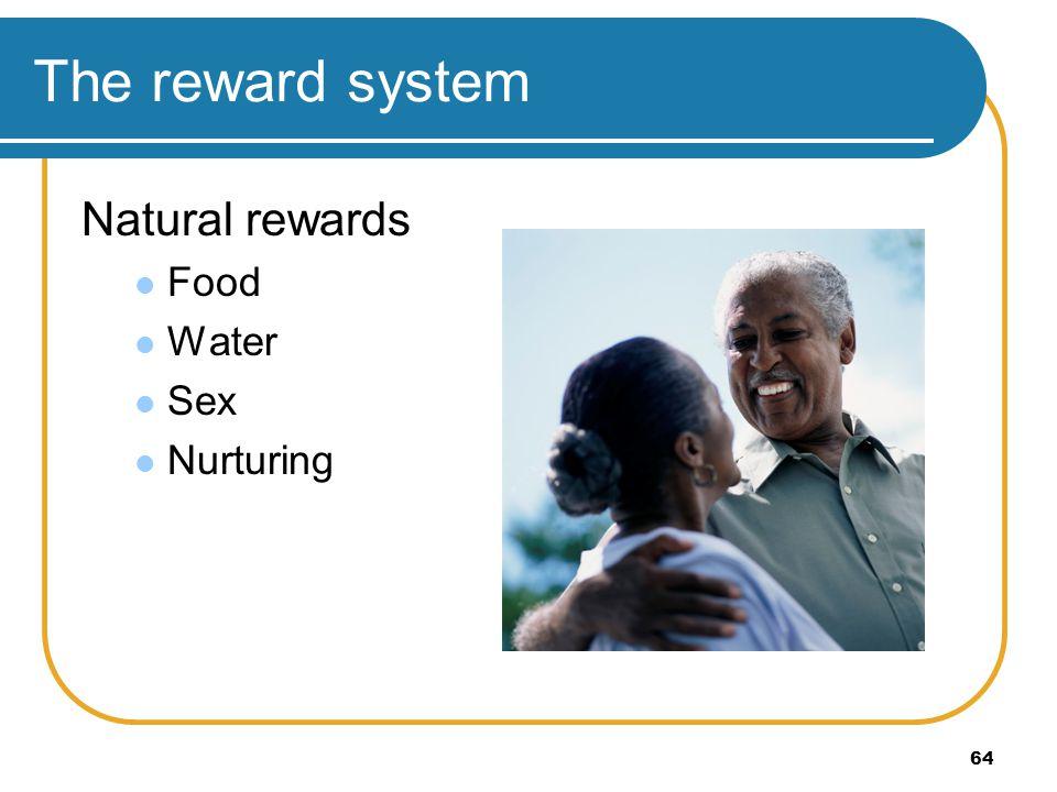 64 The reward system Natural rewards Food Water Sex Nurturing