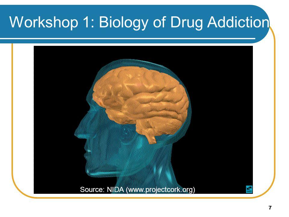 7 Workshop 1: Biology of Drug Addiction Source: NIDA (www.projectcork.org)