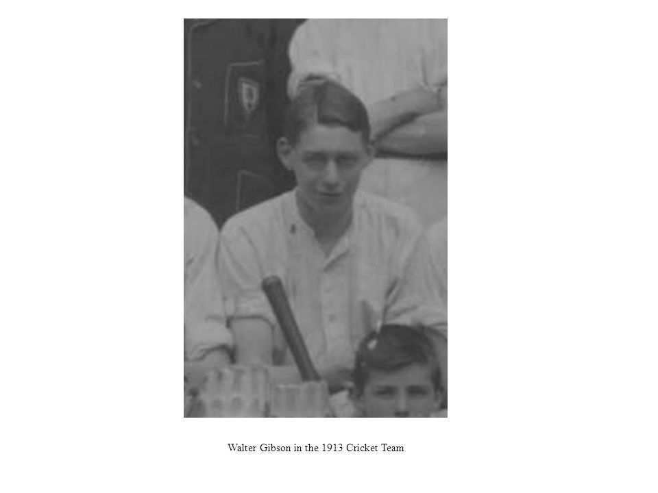 Walter Gibson in the 1913 Cricket Team