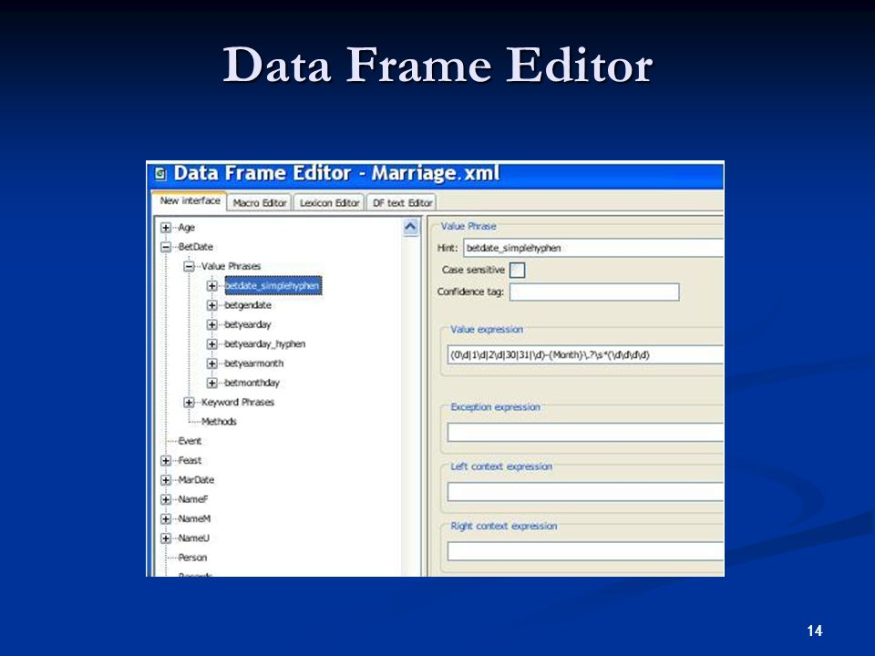 14 Data Frame Editor