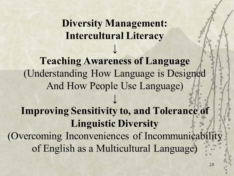 28 Diversity Management: Intercultural Literacy Teaching Awareness of Language (Understanding How Language is Designed And How People Use Language) Improving Sensitivity to, and Tolerance of Linguistic Diversity (Overcoming Inconveniences of Incommunicability of English as a Multicultural Language)