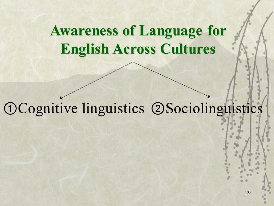 29 Cognitive linguistics Sociolinguistics Awareness of Language for English Across Cultures