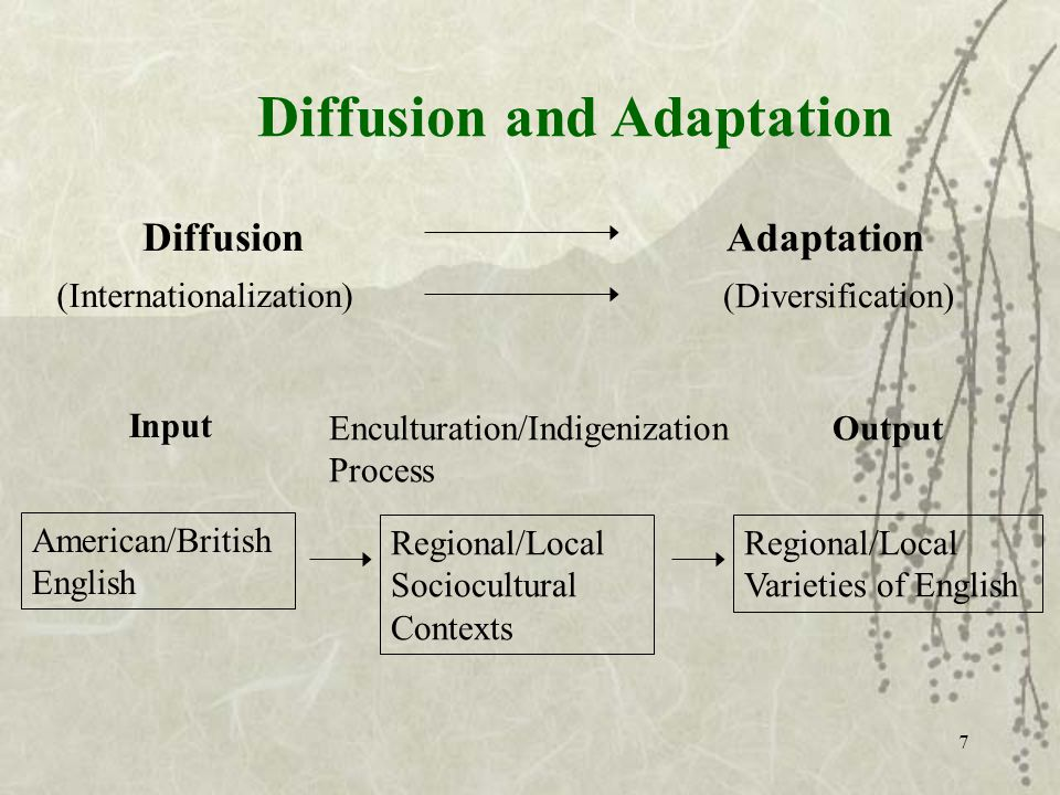 Diffusion (Internationalization) Adaptation (Diversification) Input American/British English Enculturation/Indigenization Process Regional/Local Sociocultural Contexts Output Regional/Local Varieties of English Diffusion and Adaptation 7
