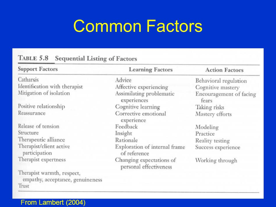 Common Factors From Lambert (2004)