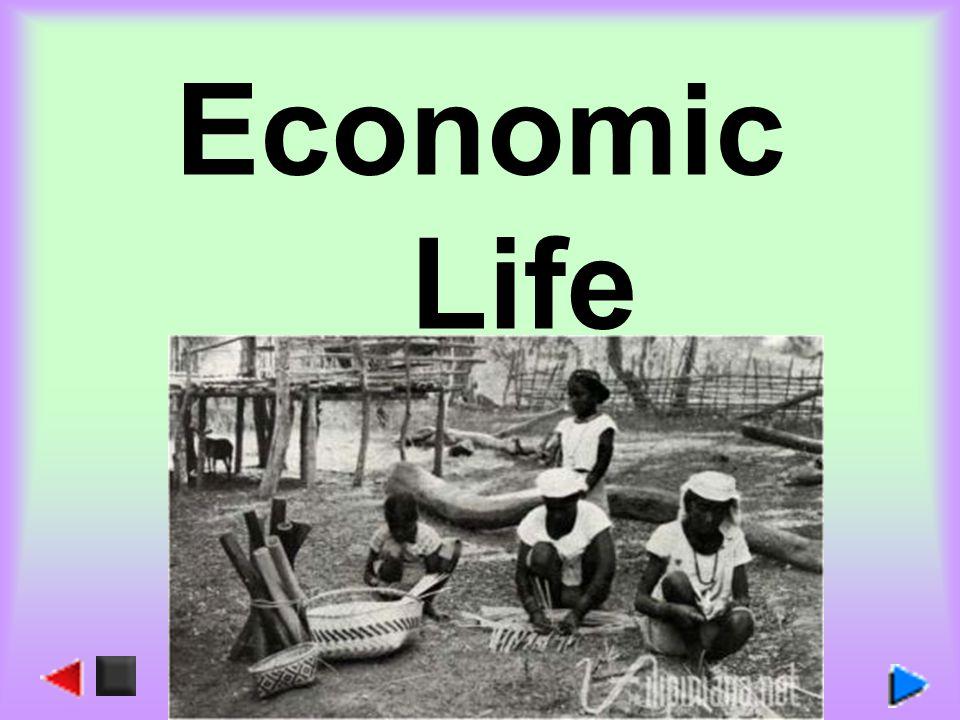 Economic Life