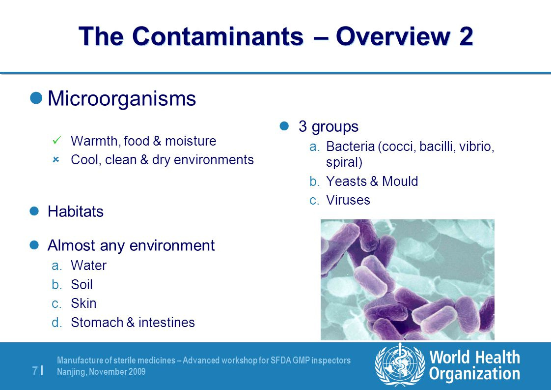 Manufacture of sterile medicines – Advanced workshop for SFDA GMP inspectors Nanjing, November 2009 7 |7 | The Contaminants – Overview 2 Microorganism
