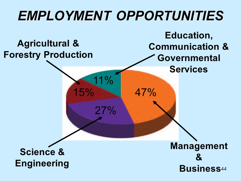 44 47% 11% 27% 15% Agricultural & Forestry Production Management & Business Science & Engineering Education, Communication & Governmental Services EMPLOYMENT OPPORTUNITIES