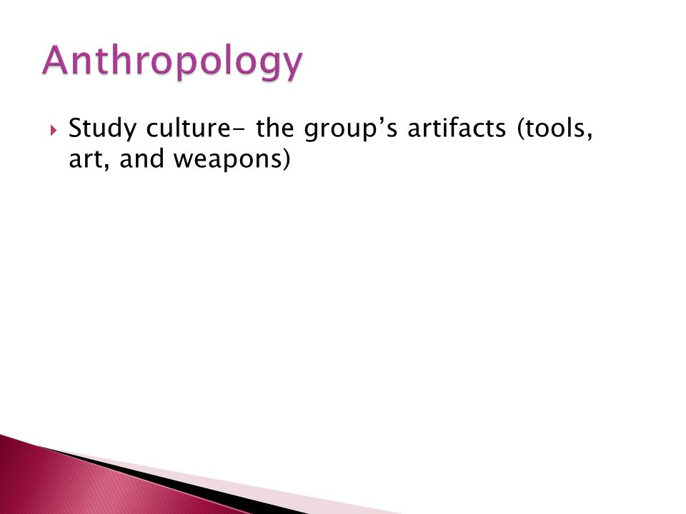 Study culture- the groups artifacts (tools, art, and weapons)