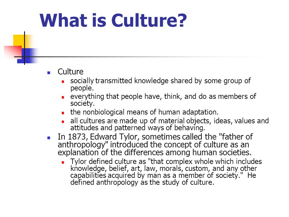 What is Culture? Culture socially transmitted knowledge shared by some group of people. everything that people have, think, and do as members of socie
