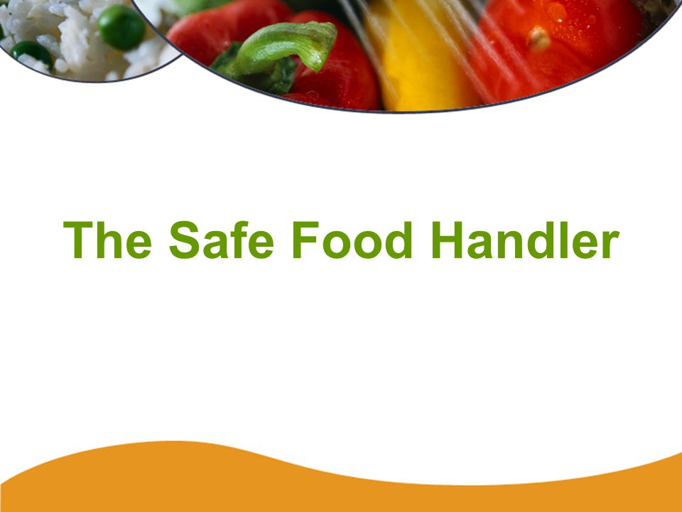 Safe Food Handler77 Food Handler -- Right or Wrong?