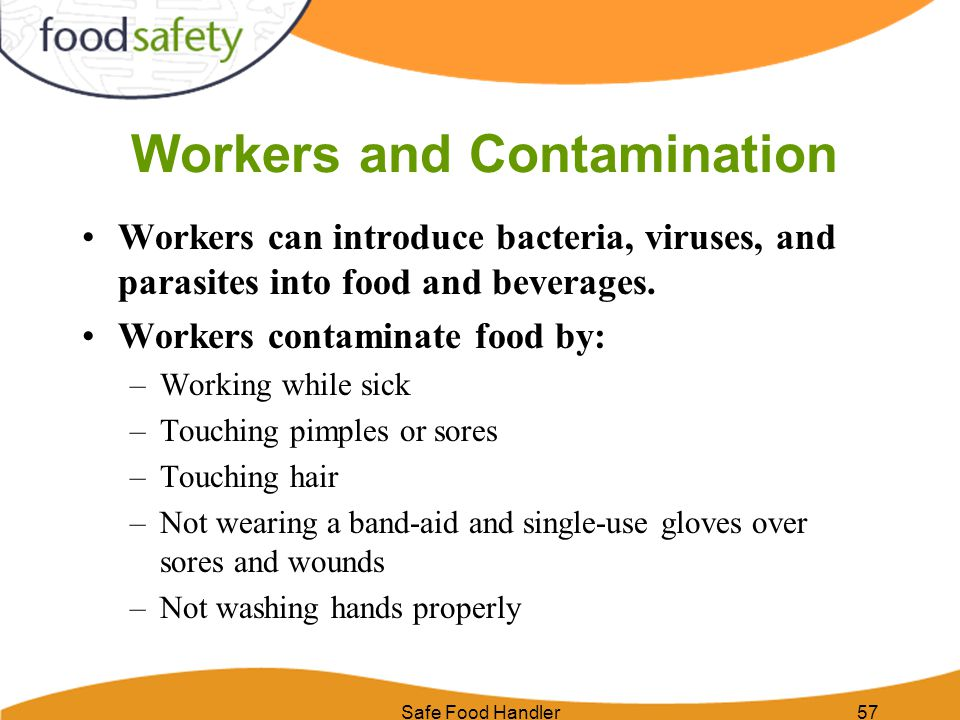 Safe Food Handler57 Workers and Contamination Workers can introduce bacteria, viruses, and parasites into food and beverages. Workers contaminate food
