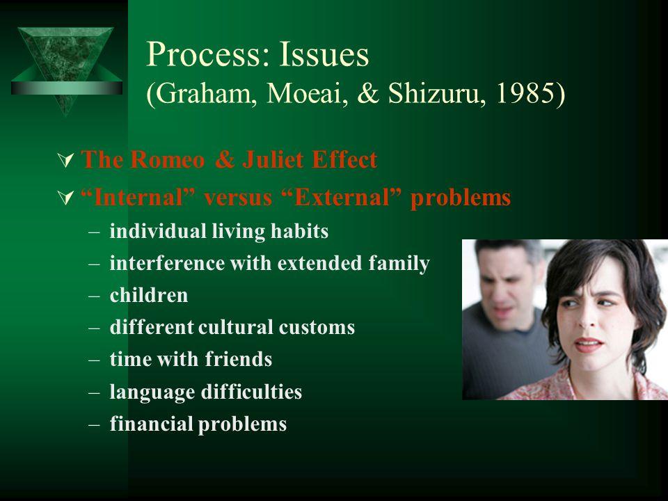 Process: Issues (Graham, Moeai, & Shizuru, 1985) The Romeo & Juliet Effect Internal versus External problems –individual living habits –interference w