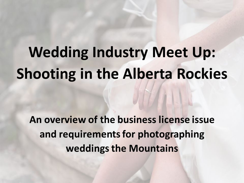 Wedding Industry Meet Up: Shooting in the Alberta Rockies An overview of the business license issue and requirements for photographing weddings the Mountains