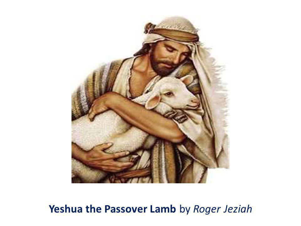 Yeshua the Passover Lamb by Roger Jeziah