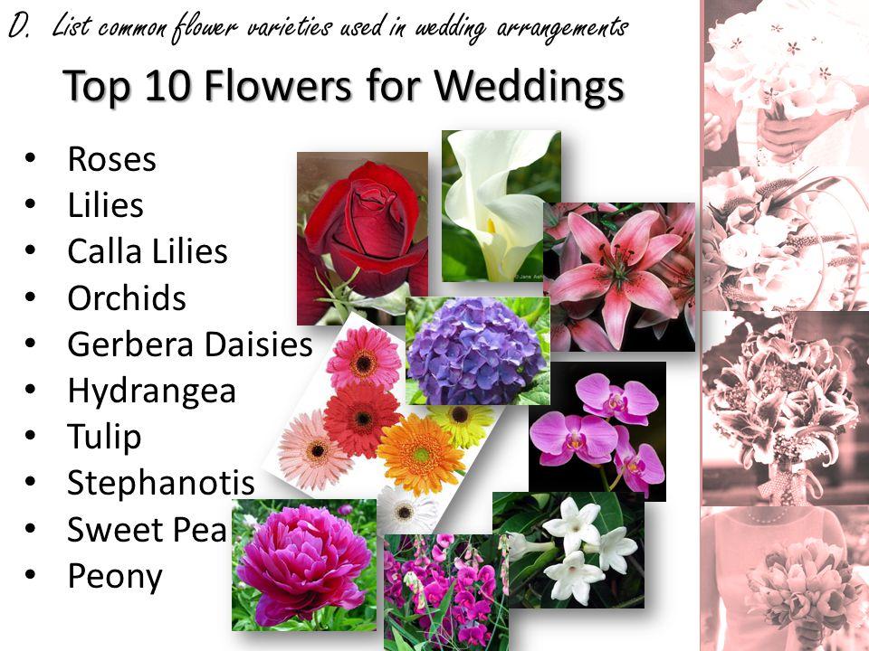 D. List common flower varieties used in wedding arrangements Roses Lilies Calla Lilies Orchids Gerbera Daisies Hydrangea Tulip Stephanotis Sweet Pea P
