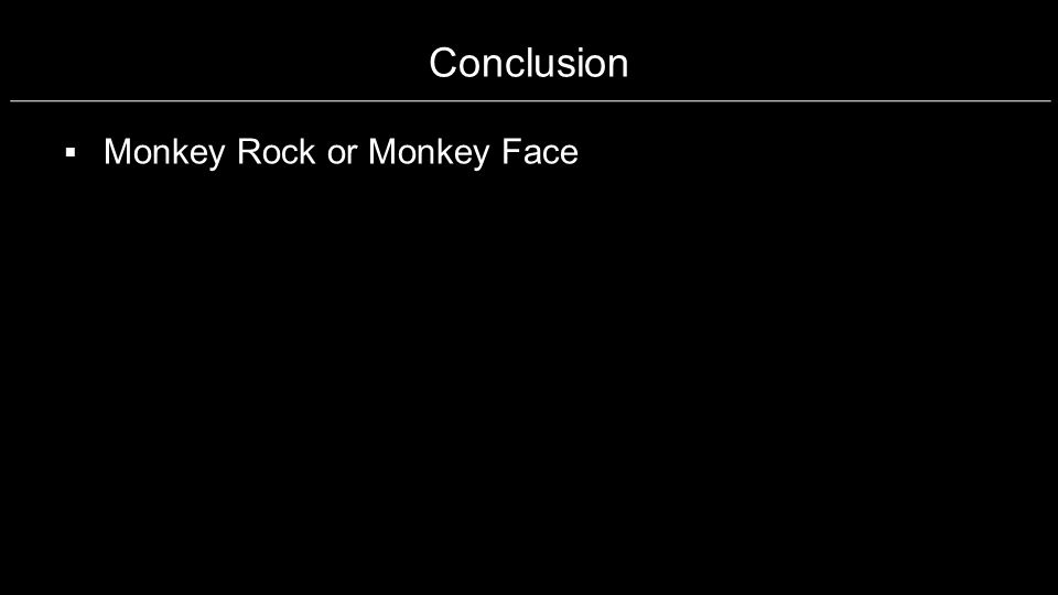 Conclusion Monkey Rock or Monkey Face