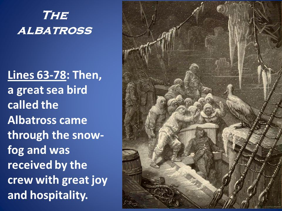 The albatross Lines 63-78: Then, a great sea bird called the Albatross came through the snow- fog and was received by the crew with great joy and hosp