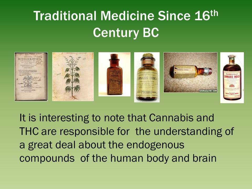 Traditional Medicine Since 16 th Century BC It is interesting to note that Cannabis and THC are responsible for the understanding of a great deal abou