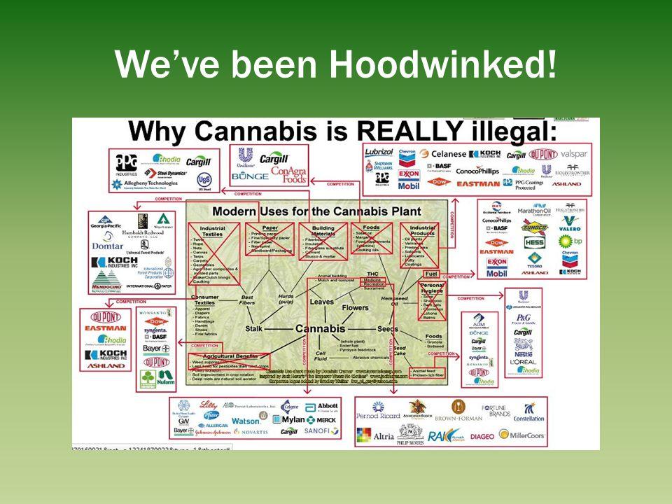 Weve been Hoodwinked!