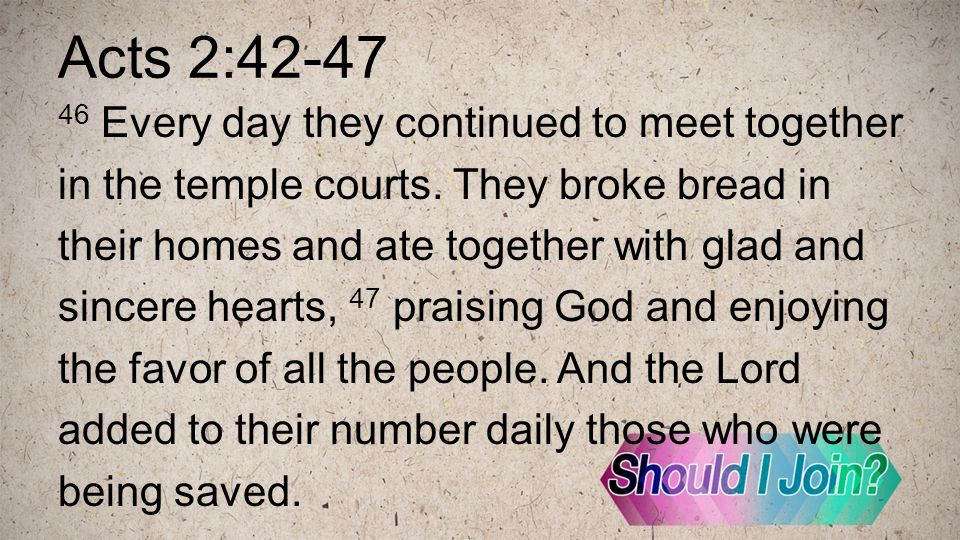 Acts 2:42-47 46 Every day they continued to meet together in the temple courts.