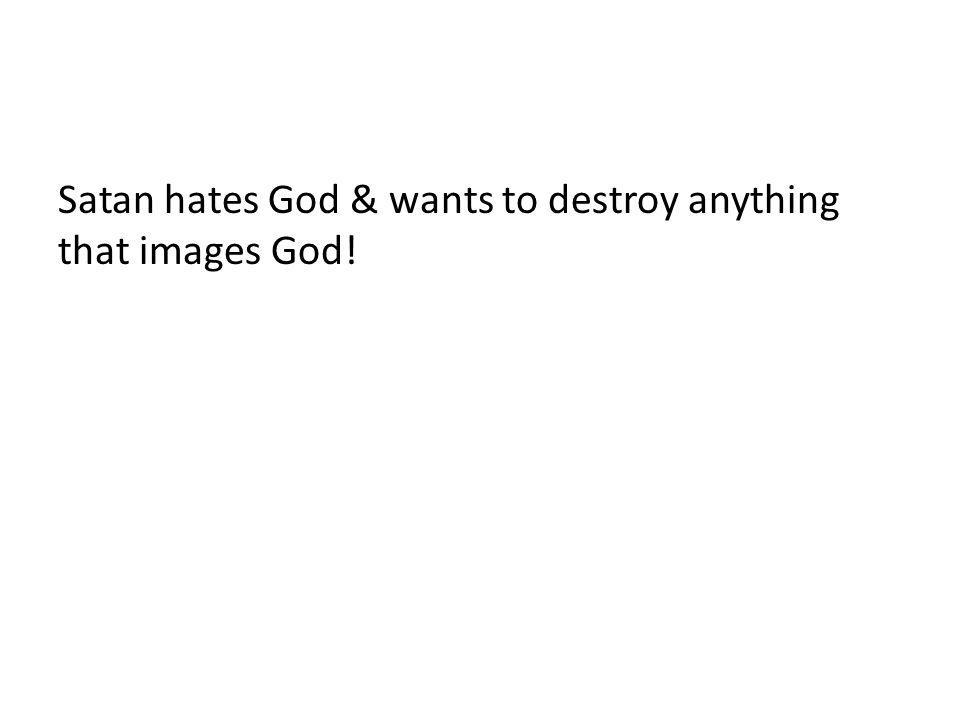 Satan hates God & wants to destroy anything that images God!