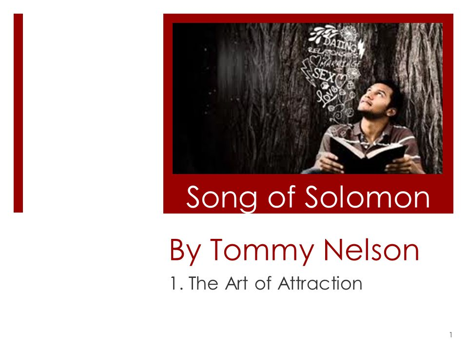 By Tommy Nelson 1. The Art of Attraction Song of Solomon 1