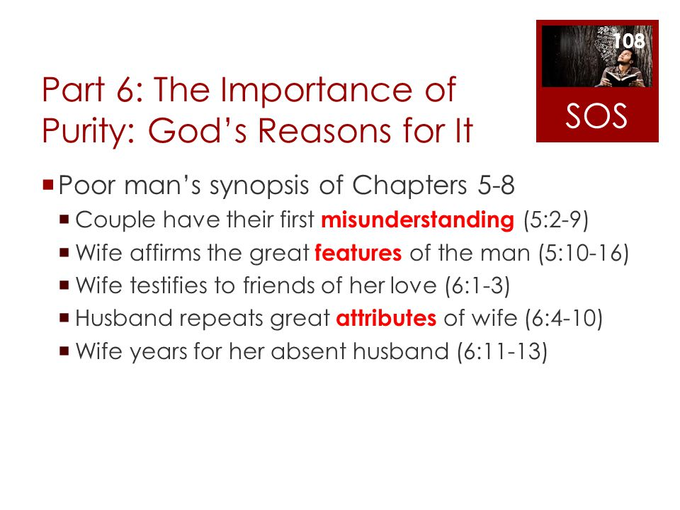Part 6: The Importance of Purity: Gods Reasons for It Poor mans synopsis of Chapters 5-8 Couple have their first misunderstanding (5:2-9) Wife affirms