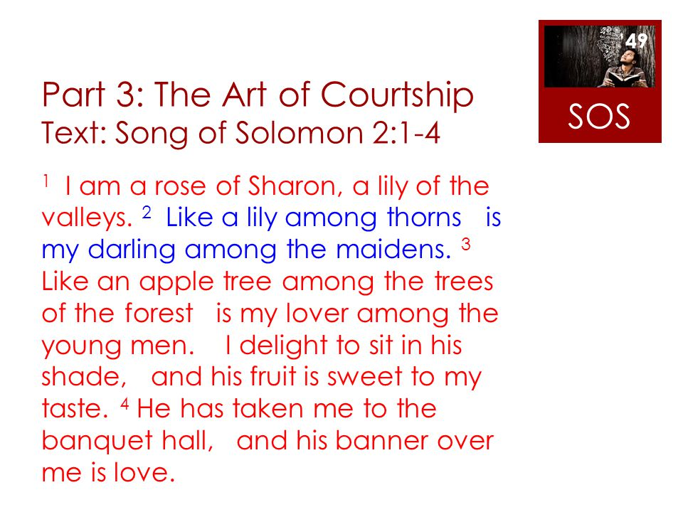 Part 3: The Art of Courtship Text: Song of Solomon 2:1-4 1 I am a rose of Sharon, a lily of the valleys. 2 Like a lily among thorns is my darling amon