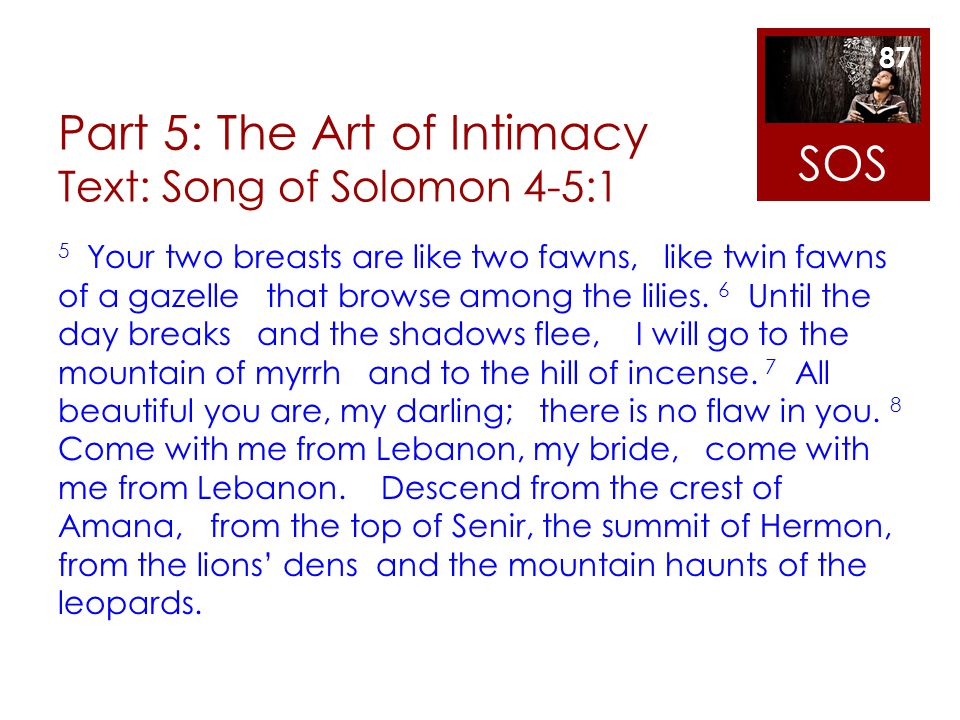 Part 5: The Art of Intimacy Text: Song of Solomon 4-5:1 5 Your two breasts are like two fawns, like twin fawns of a gazelle that browse among the lili