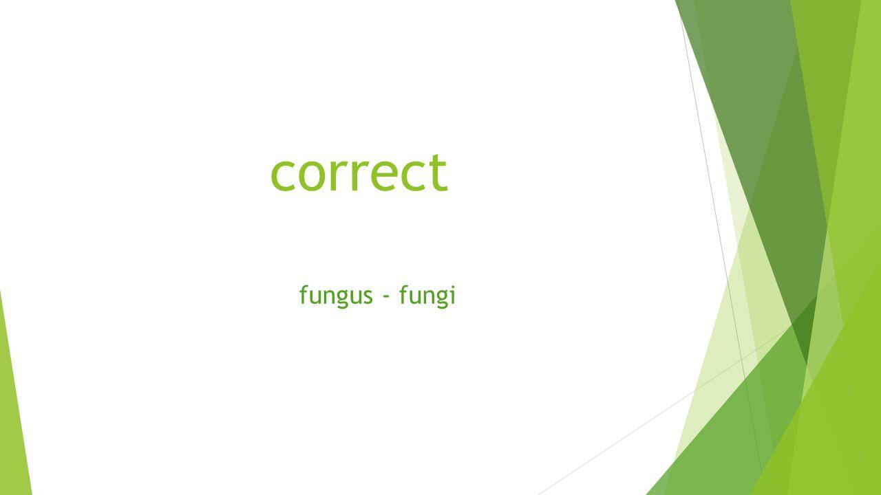 correct fungus - fungi