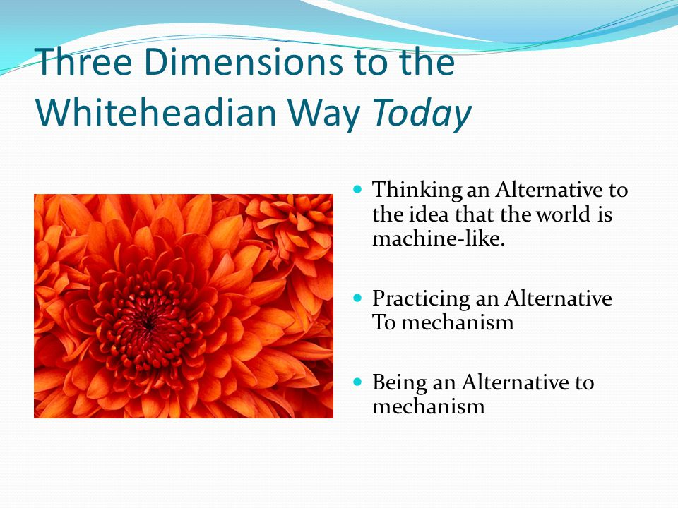 Three Dimensions to the Whiteheadian Way Today Thinking an Alternative to the idea that the world is machine-like.