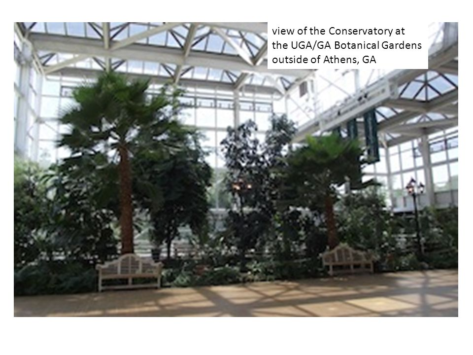 view of the Conservatory at the UGA/GA Botanical Gardens outside of Athens, GA