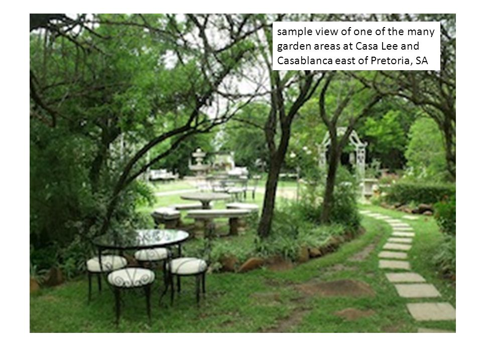 sample view of one of the many garden areas at Casa Lee and Casablanca east of Pretoria, SA
