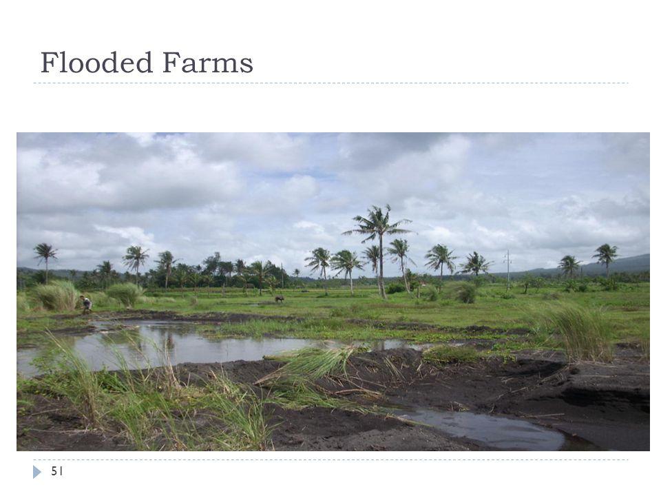 Flooded Farms 51